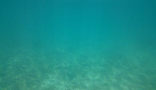 スマホの防水ケースで水中撮影するのは無理がありました!