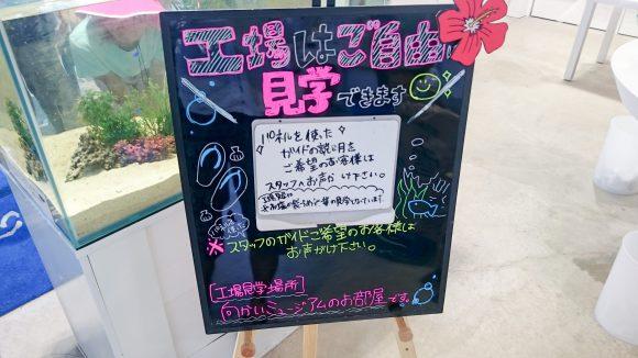 yukishio22